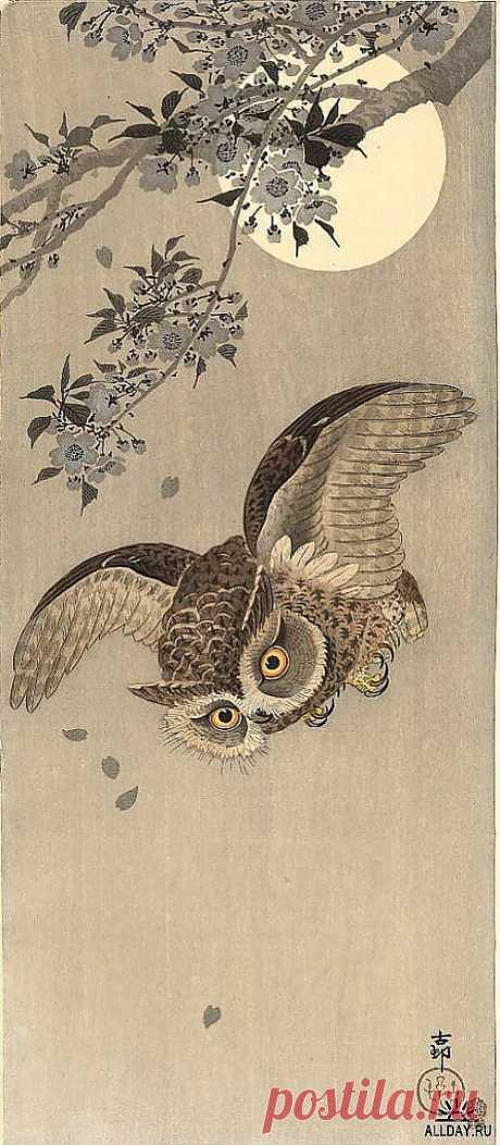 "The Japanese painting the Artist of Koson (Naga Oban)\"" ALLDAY - the national website about design   postila.ru\/Юра%20Вахрушев"