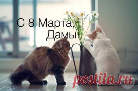 Милые женщины, поздравляем вас с самым нежным, светлым и прекрасным днём в году — 8 Марта! 😊🌷