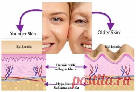 Бульон сотрёт морщинки   Если долго-долго варить в воде кости, сухожилия, связки, костный мозг, кожу и другие части животного, то кости и ткани превращаются в сыворотку юности и натуральный ботокс. Главная составляющая буль…