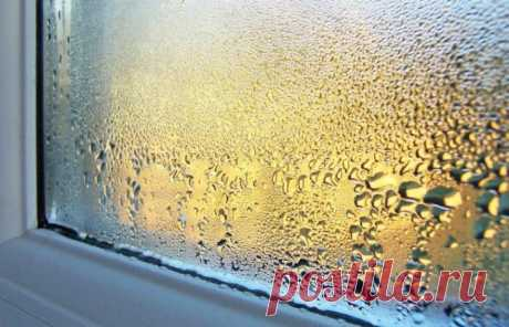 Вот как избавиться от влаги на пластиковых окнах. Забудьте об этой проблеме навсегда! – В РИТМІ ЖИТТЯ
