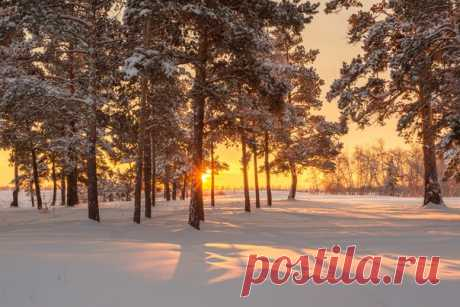 Rising over Yakutia. The author of a photo is Mikhail Potapov: nat-geo.ru\/photo\/user\/161625\/ Good morning!