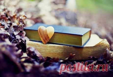 9 книг, которые способны спасти даже от самой тяжелой депрессии - Нимфа