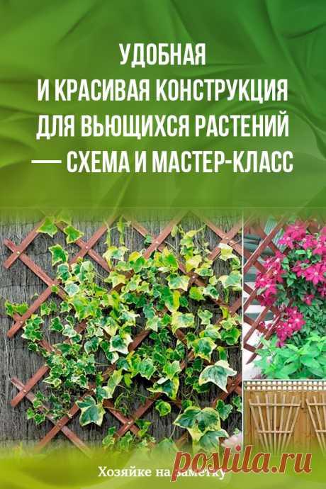 Удобная и красивая конструкция для вьющихся растений — схема и мастер-класс