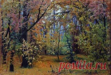 Осенний Шишкин