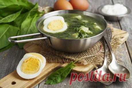 В теплое время года особенно хорош легкий щавелевый суп со свежей зеленью. Его приятная кислинка отлично освежает, но в то же время он достаточно сытный. Рассказываем лучшие рецепты приготовления! 1. Щавелевый суп с курицей и горошком Можно обойтись и без горошка, но с ним красивее. Тебе
