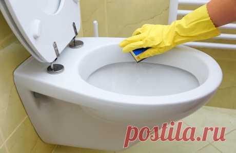 Как часто нужно чистить туалетную комнату и унитаз: мнение специалиста