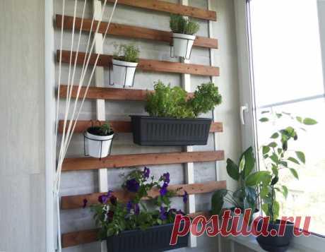 Идея для огорода на балконе: старая вагонка в деле