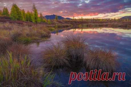 «Колымская зорька». Эликчанские озера, Хасынский район, Магаданская область. Автор фото – Кирилл Уютнов: