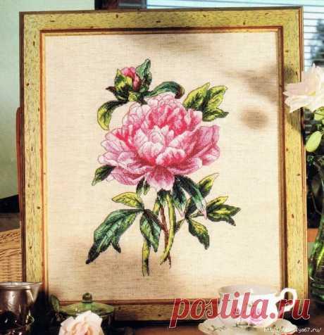 Цветы пионы вышивка