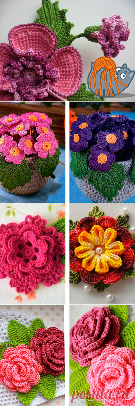 Knitted flowers a scheme hook for beginners - knitting of flowers with the description