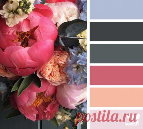Как сочетать цвета правильно — DIYIdeas