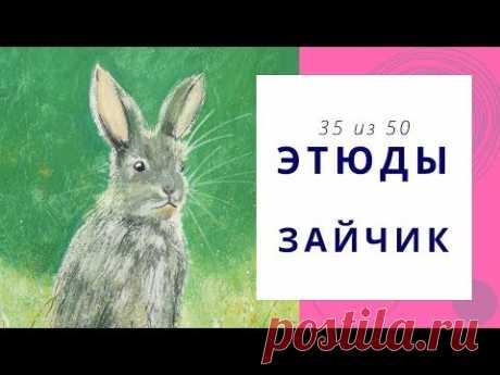 3️⃣5️⃣ ЗАЙЧИК (гуашь). Серия «50 этюдов»