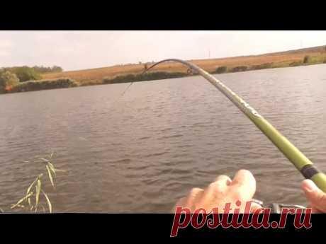 Рыбалка на живца поплавочной удочкой. Ловля щуки осенью с берега