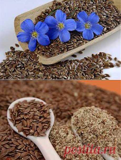 Льняное семя польза и вред, как принимать, применение семян | семиделка.ру