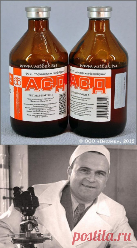 Могучее лекарство, о котором молчала медицина в СССР - HeadInsider