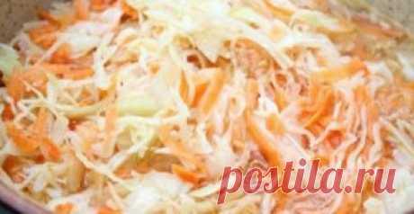 Квашеная капуста — лучшие рецепты приготовления          Как притягательна и полезна зимой квашенная капустка, кисленькая, хрустящая, чуть розоватая от морковки или свеклы, а главное – безумно вкусная. Наши бабушки считали, что квасить капусту нужн…