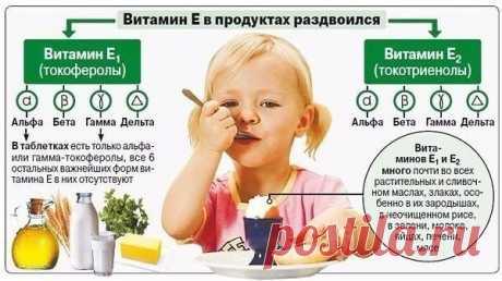Витамин Е для организма.