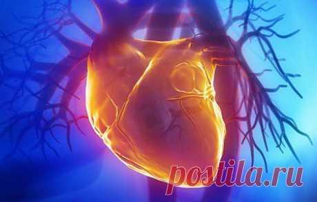 Бостонский исследователь и хирург, а также доктор Массачусетского госпиталя Харольд Отт хочет предпринять попытки создания более сложных элементов организма, таких так сердце