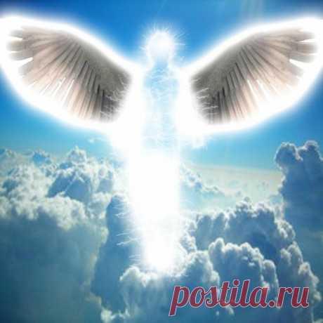 Утренняя птица, душу не тирань, Что тебе не спится в этакую рань, Утренняя птица, песен мне не пой, Мне мой ангел снится, долгожданный мой.