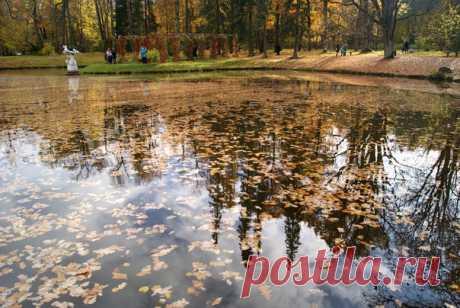 Роскошные золотой пруд. Ораниенбаум