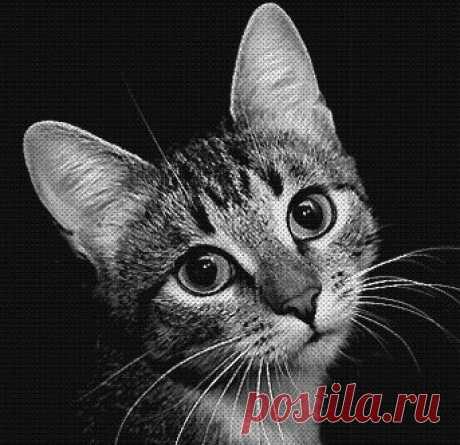 Схема вышивки «Грустный кот» - Вышивка крестом
