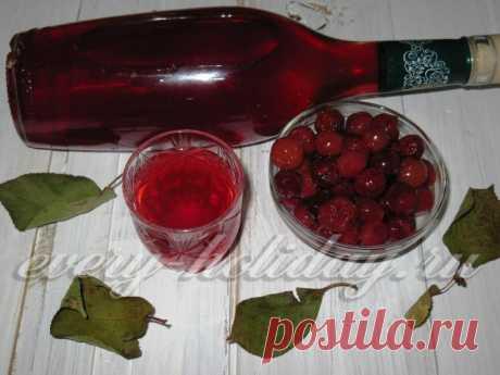 Быстрая вишневая наливка на водке в домашних условиях: рецепт