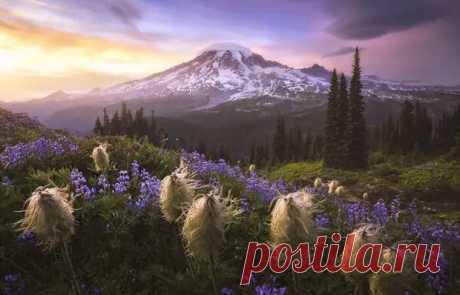 Завораживающие фото природы названные лучшими жюри Международного конкурса пейзажной фотографии 2020 года - ДОСТОЙНАЯ ЖИЗНЬ НА ПЕНСИИ - медиаплатформа МирТесен
