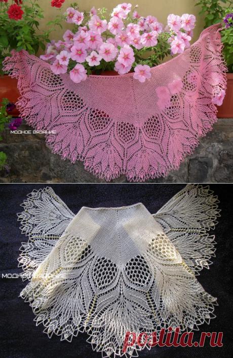 Шаль *Нарцисс* спицами - Модное вязание
