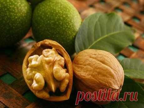 (Как вырастить грецкий орех на даче