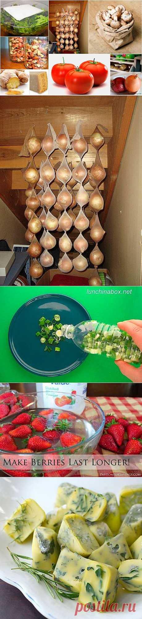 Как правильно хранить продукты (26 фото) - Женская страничка <!--if()-->- <!--endif--> - Главная - Утканос