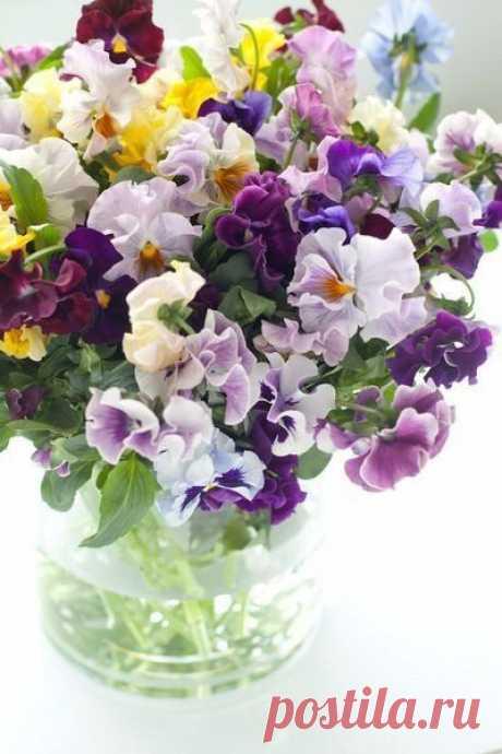 Цветы нам дарят настроение.