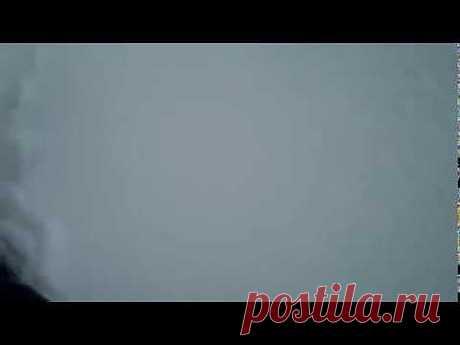 (+1) тема - Кот и первый снег | ВИДЕОСМАК | милые мордашки