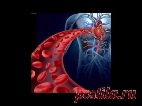 Очищение и восстановление микроэлементов крови .омоложение организма