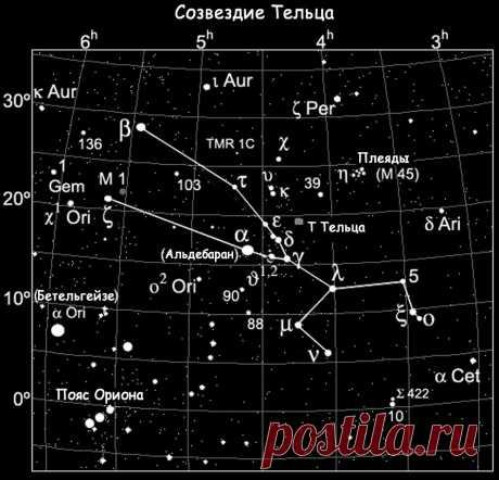 Картинки Созвездия Тельца (37 фото) ⭐ Забавник