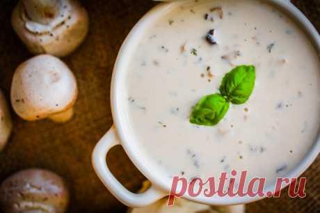 Как приготовить грибной суп Исторические источники гласят, что наши предки изобрели суп практически сразу после того, как добыли первый огонь. Древние кулинары варили некое подобие супа-пюре из обжаренных на костре и измельченны…