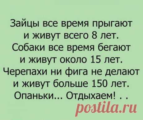 Original: https://cs636128.vk.me/v636128451/38151/MFfIL9lG1us.jpg