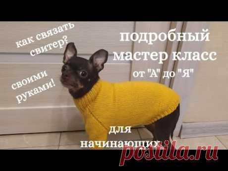 Как связать свитер для собак