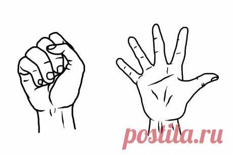 Ежедневное сжатие пальцев рук в кулак. Простое упражнения для здоровья сердца и восстановления артериального давления | Здоровая жизнь | Яндекс Дзен