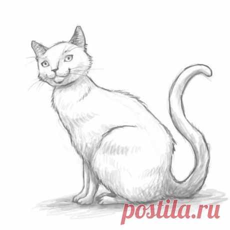 """«Результаты поиска по запросу """"рисунки кошек"""" в Яндекс.Картинках» — карточка пользователя slavashishaev в Яндекс.Коллекциях"""