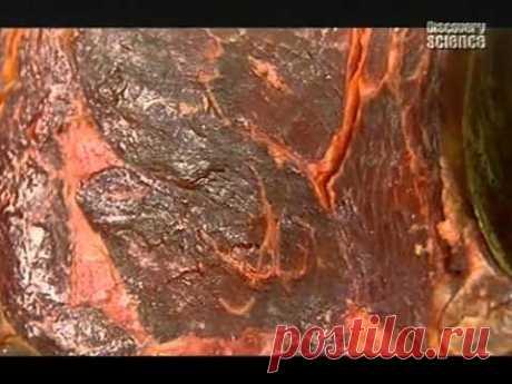 Кухонная химия. Мясо — Блюменталь Хестон — видео