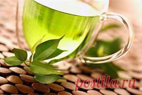 Полезные свойства черного, белого и зеленого чая...