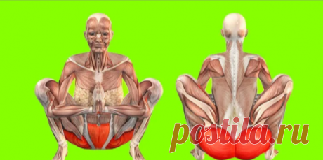 """5 боеспособных упражнений Кегеля для мощного подтягивания мышц промежности.  Упражнения для укрепления мышц тазового дна (укрепление мышц малого таза, """"мышечного корсета"""" нашего организма, который укрепляет и удерживает органы малого таза при любых физиологических нагрузках) известны уже достаточно давно. Они входят в комплекс лечебной физкультуры для восстановления после операций на органах малого таза и лечения многих заболеваний связанных с ними."""