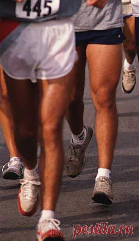 Последний гвоздь в гроб кардио - Диеты, Фитнес и Бодибилдинг.  Чувствуете мягкость на животе? Ваш пресс больше не виден? Вам необходимо быстро похудеть? Это может произойти из-за пропуска тренировок и послаблений в диете. Или если вы тренируетесь для триатлона...