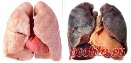 Очищение легких после курения — Полезные советы