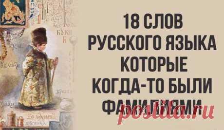18 слов русского языка, которые когда-то были фамилиями — Женский Гид