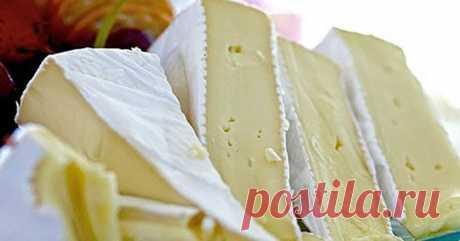Универсальный французский сыр: можно ли есть его с плесенью?