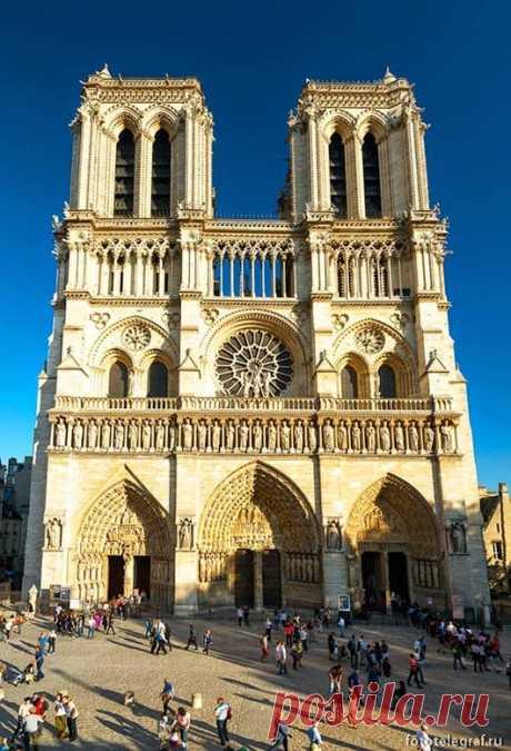 (+4) Прогулка по собору Парижской Богоматери