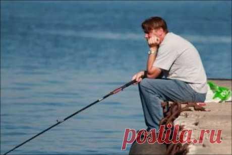 Погодные приметы для хорошего клева - В чем же секрет клева? | Рыбалка по-русски | Яндекс Дзен