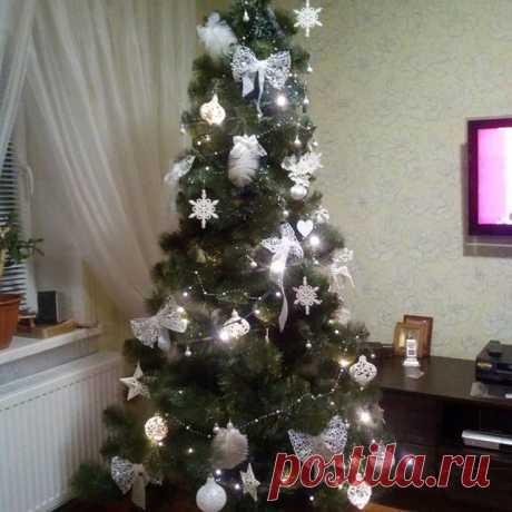 На изображении может находиться: новогодняя елка, растение и в помещении