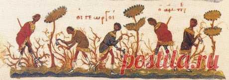 Притча о винограднике.Евангелие (Мк.12,1-12)(с толкованием)